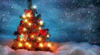 """Se não leu ainda, leia primeira o artigo """"Deuses pagãos são celebrados todos os anos pelos Cristãos!"""" clicando AQUI. 1-Porque a Bíblia não manda celebrar o nascimento de Jesus. 2- […]"""